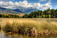 Mt Katahdin with Grasses