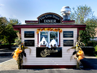 The LIttle Depot Diner